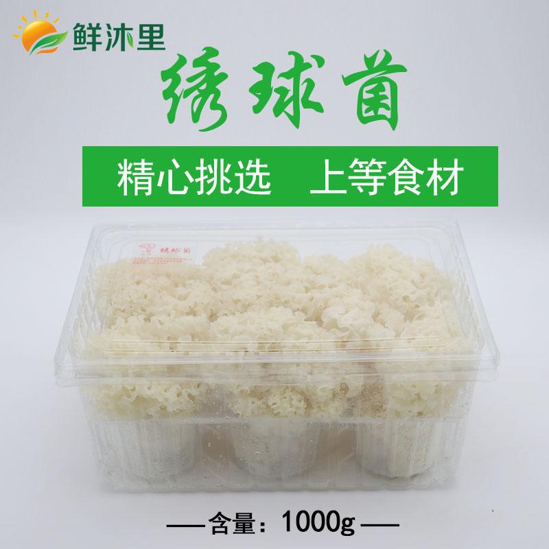 新鲜绣球菌1kg装,上海包邮