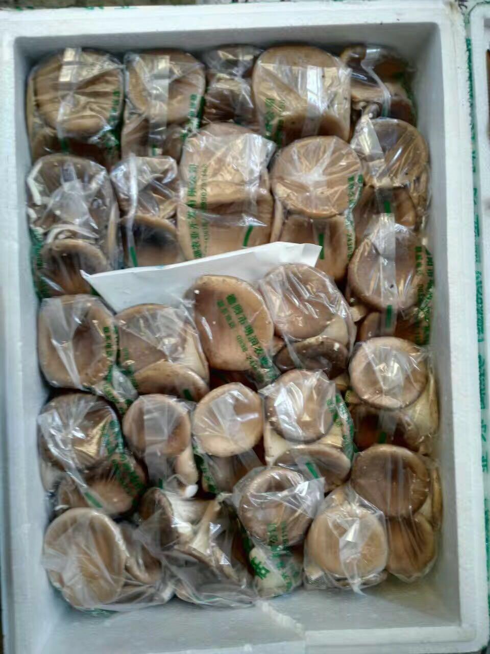 新鲜虎奶菇,125g 江浙沪,任搭5件包邮
