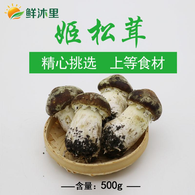 新鲜赤松茸,500g,上海满88元包邮