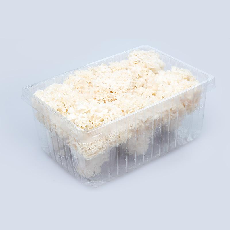 古田绣球菌1kg 绣球菇 新鲜食用菌批发
