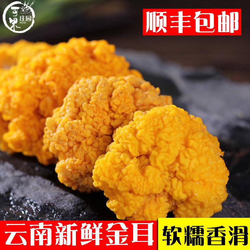 云南野生菌新鲜黄金耳银耳野生金耳菌蘑菇黄木耳食用菌一斤