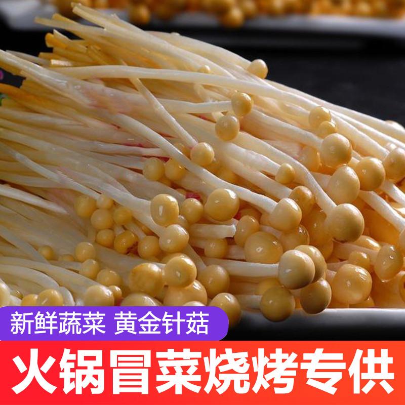 火锅食材新鲜高品质金针菇火锅配菜新鲜绿色蔬菜菇黄色金针菇150g