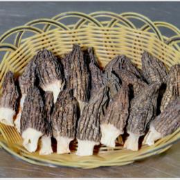 云南香格里拉祥和 A级干羊肚菌(烘干)100g/袋