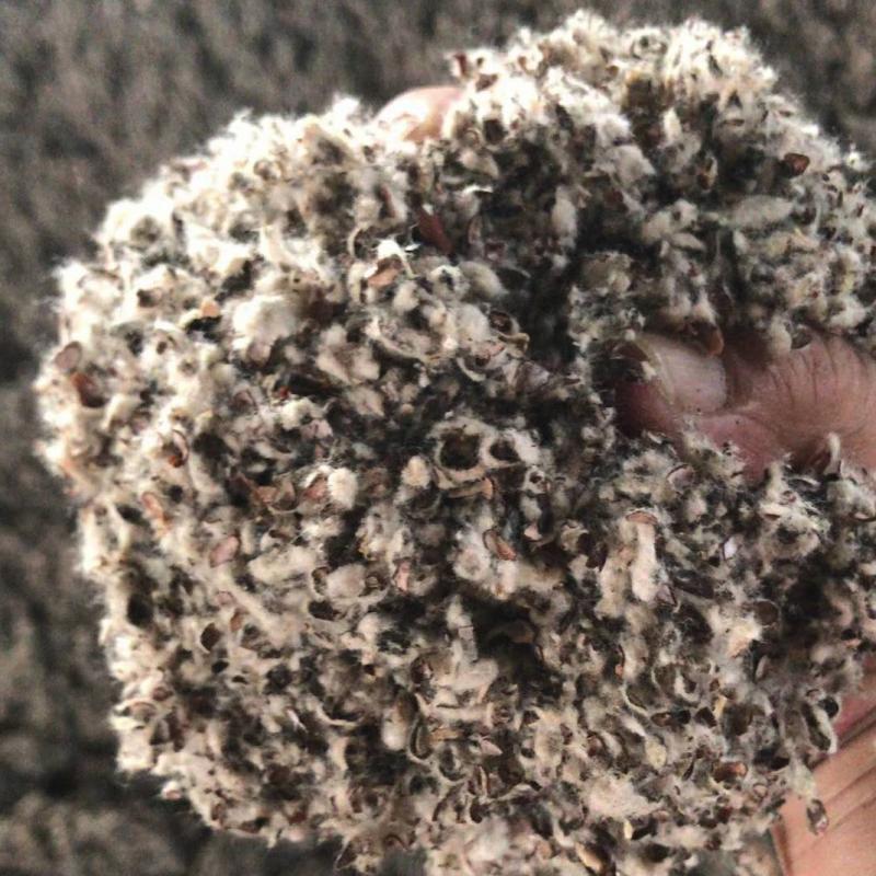山东德州龙华油脂中壳中绒对辊棉壳 山东上车价1200每吨